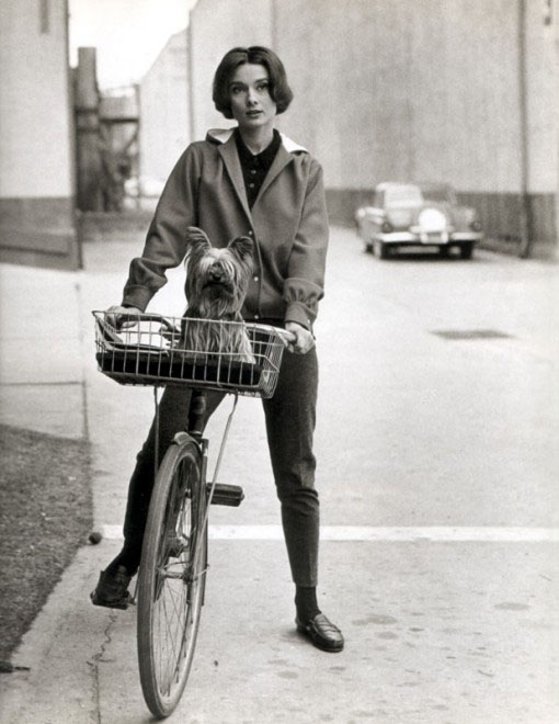 audrey-hepburn-on-a-bike-with-her-dog-black-white